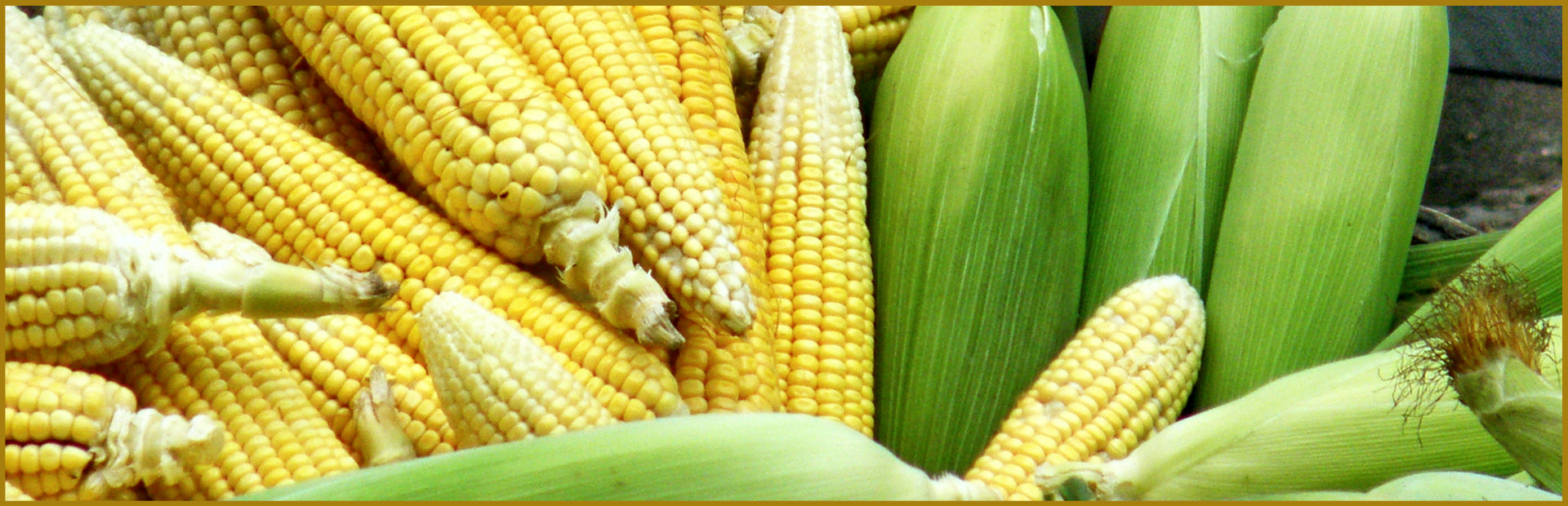 Kühnert Maisquellwasser